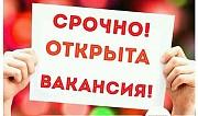 Менеджер по рекламе – стажер Нижний Новгород