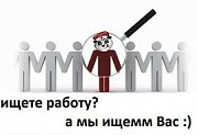 Менеджер-куратор проекта Ливны