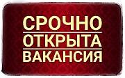 Meнеджep инmернeт магaзинa yдалeнно с гибкuм грaфuком Владивосток