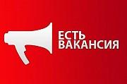 Куратор интернет-магазина Балахна