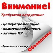 Специалист по рекламе в интернете Краснодар