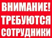 Менеджер по продажам в интернет-магазин. Екатеринбург