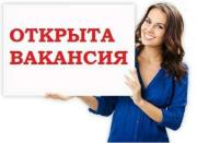 Администратор в ИП Татьяна Желукевич Жигалово