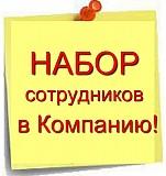 Менеджер в офис онлайн Александро-Невский